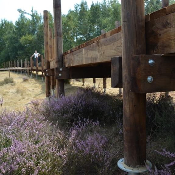 Steg Heide1